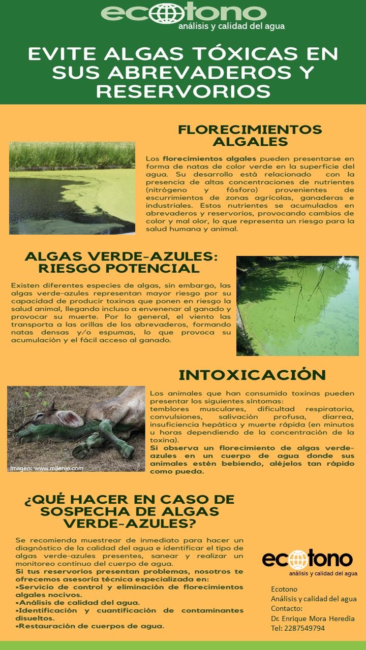 Análisis de agua para consumo de ganado