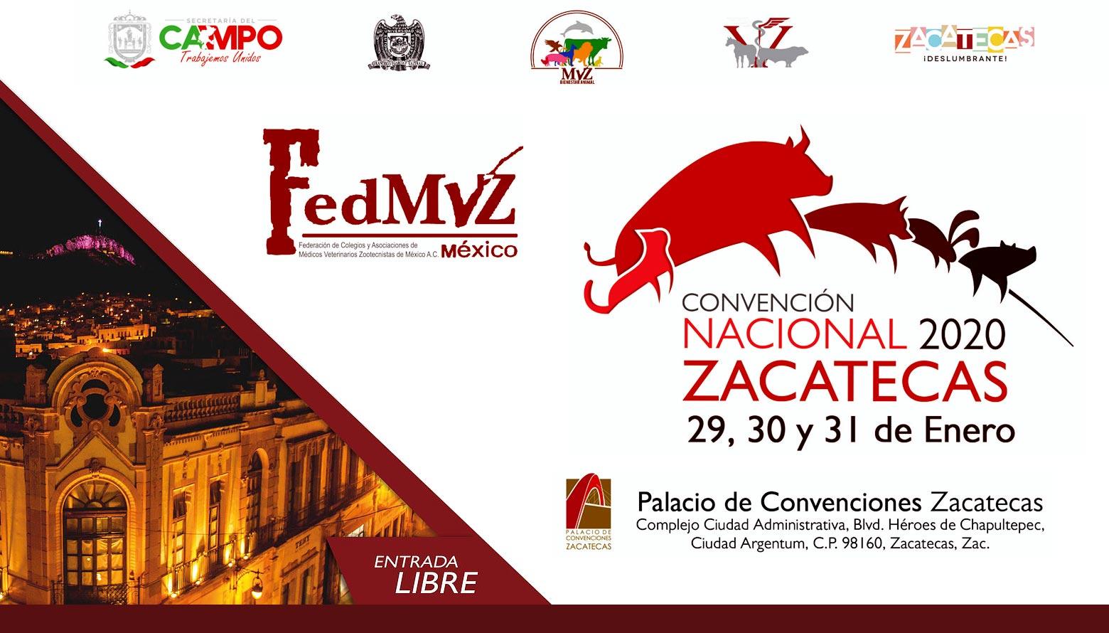 Convención Nacional 2020