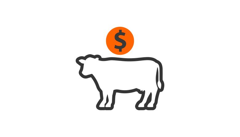 Reporte diario de arribos de ganado bovino en pie en rastros del D.F. y área metropolitana