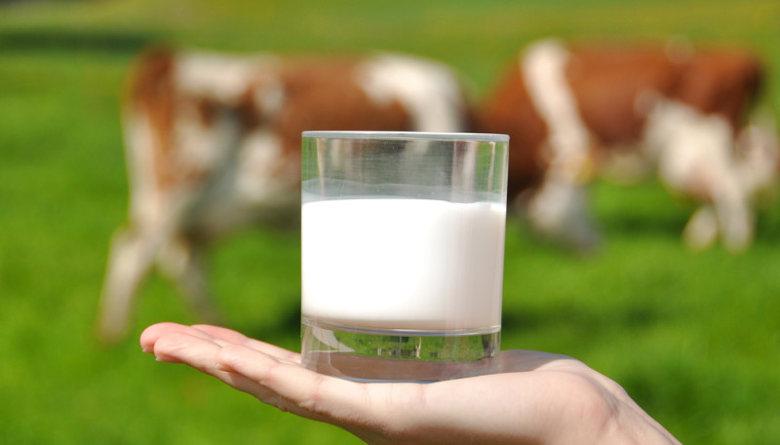El club de los 40 litros de leche - Columna AMVEB Laguna