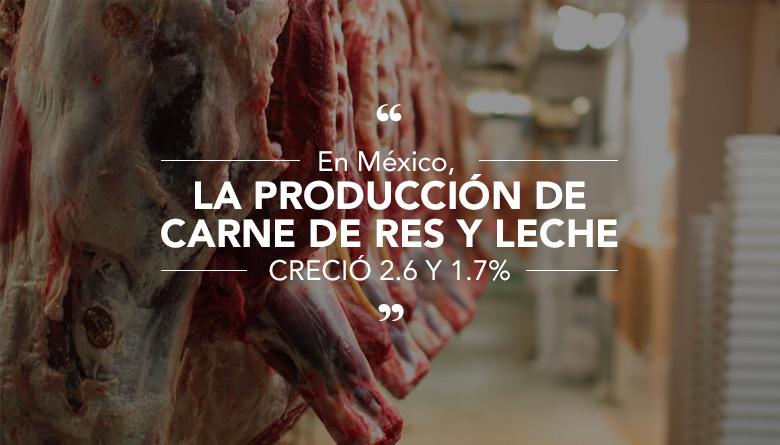 En México, la producción de carne de res y leche creció 2.6 y 1.7%