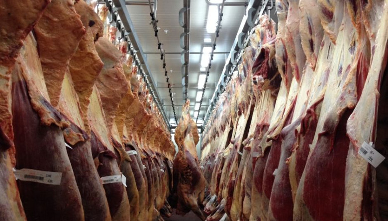 Crece 78% la exportación de carne de res en Argentina