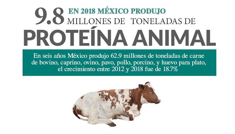 En 2018 México produjo 9.8 millones de toneladas de proteína animal