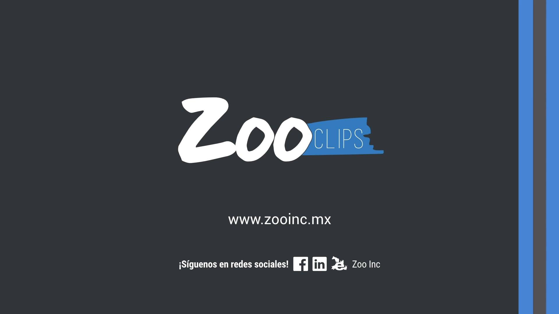 Zoo Clip: Diferenciación de marca