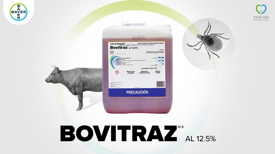 Consejos sobre bienestar animal Bayer: Sistemas Sensoriales y manejo de bovinos