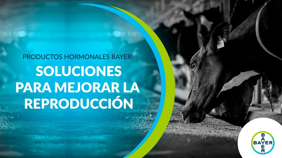 Productos Hormonales Bayer: Soluciones para mejorar la reproducción