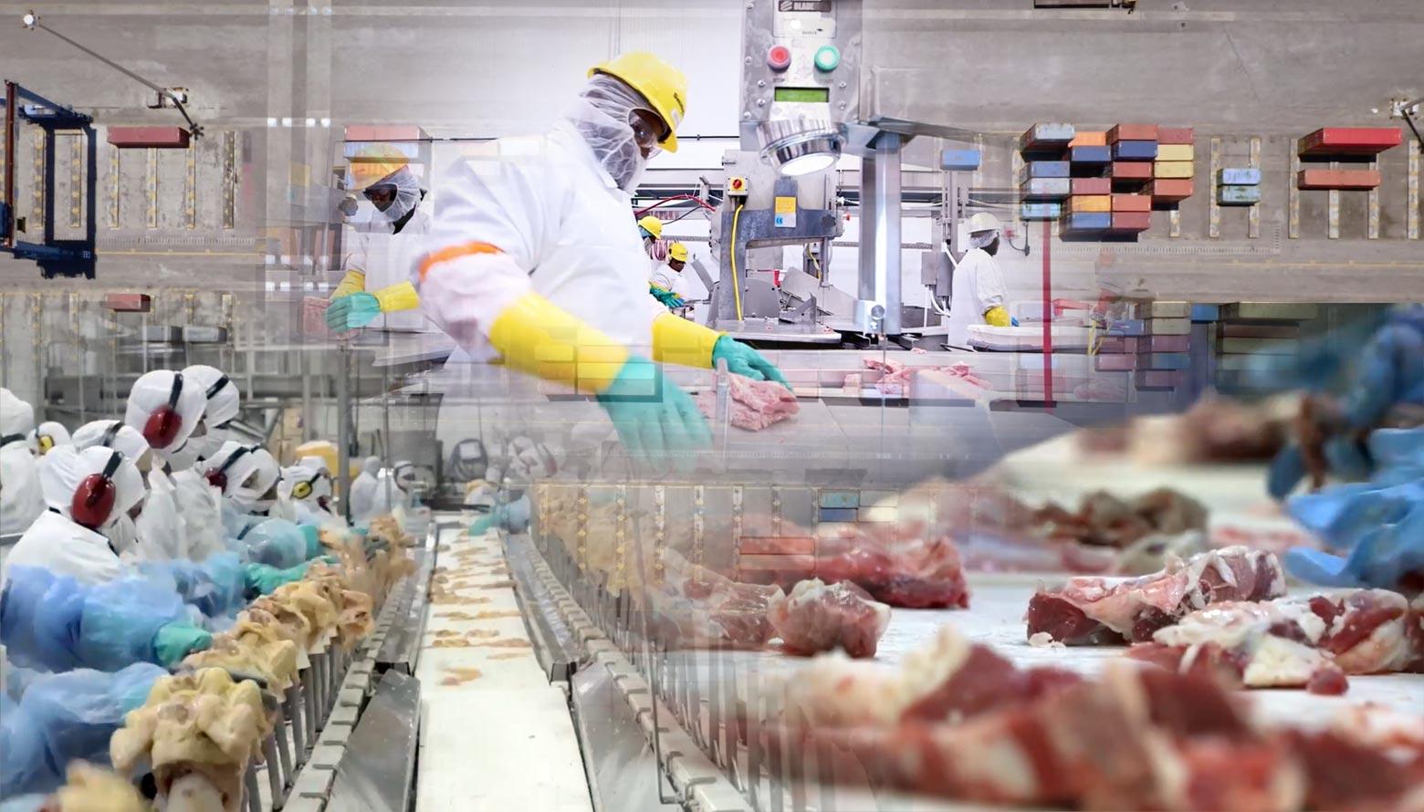 Exportaciones cárnicas mexicanas crecieron 17.3%: Sader