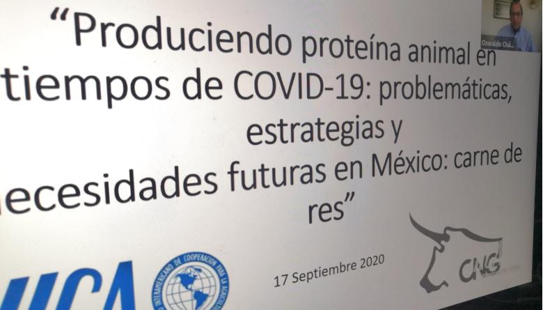 La pandemia por el Covid - 19 le ha permitido a la ganadería mexicana mostrar su fuerza