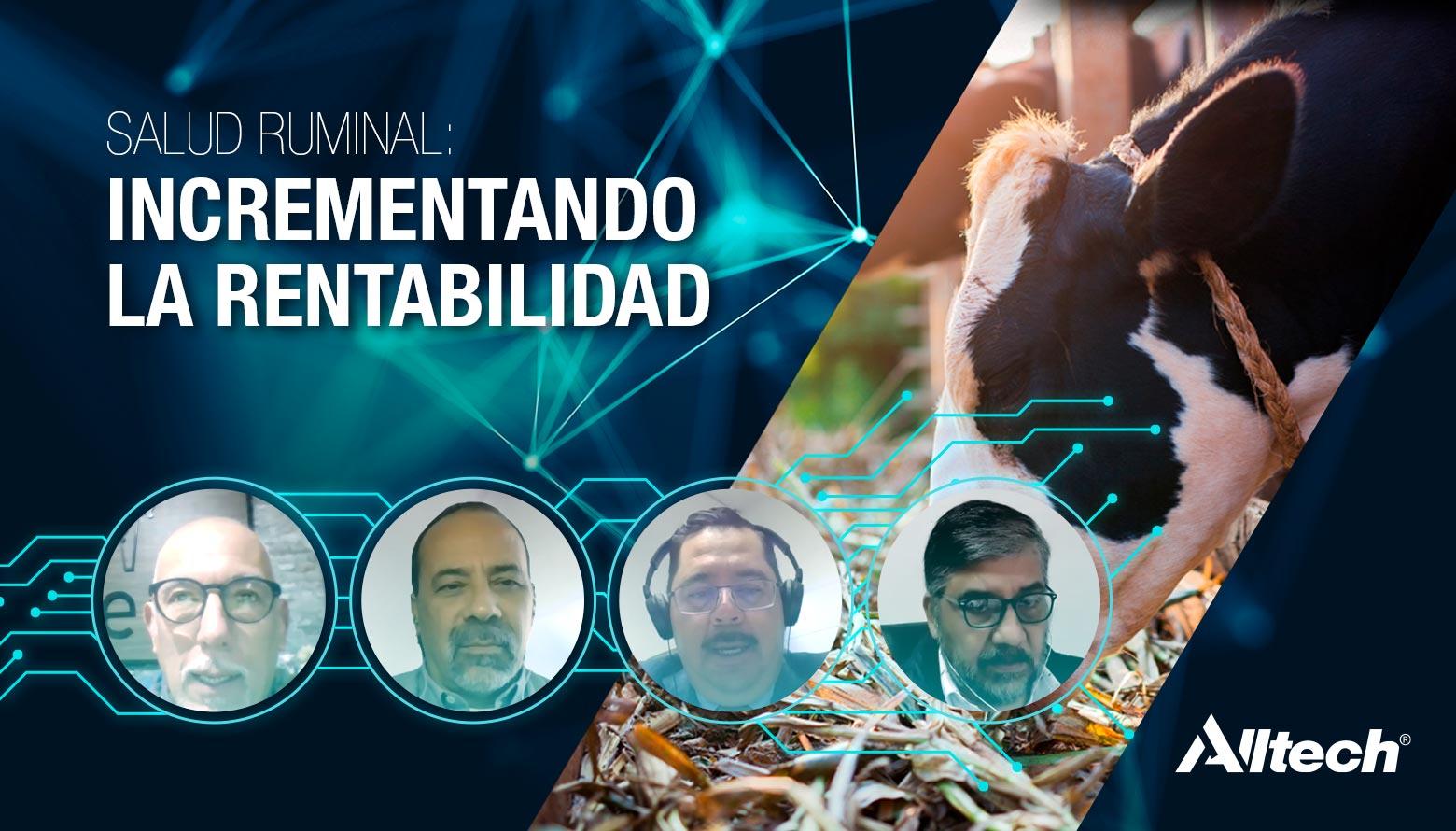 Los sectores pecuario y agroalimentario tienen un futuro positivo: Análisis de la Encuesta Global sobre Alimento Balanceado de Alltech
