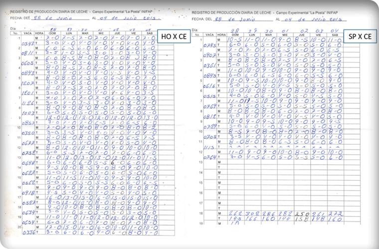 Manejo de registros para bovinos en el sistema de producción de ... 065a891a678